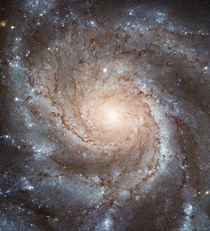 Galaktyka M101.