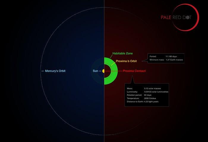 Proxima Centauri ijej planeta wporównaniu doUkładu Słonecznego.