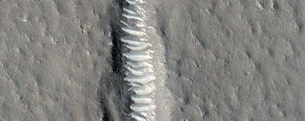 Utopia Planitia.