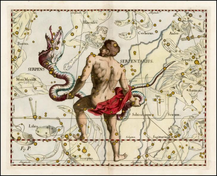 Wężownik w wizji Jana Heweliusza