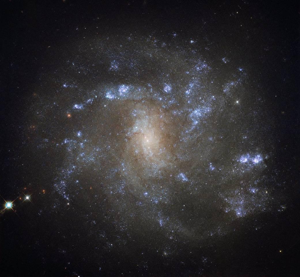 Galaktyka NGC 2500