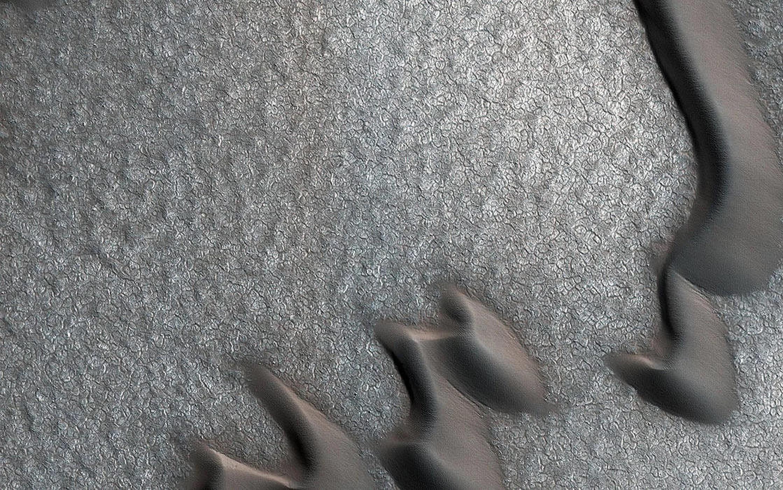 wydmy piaskowe