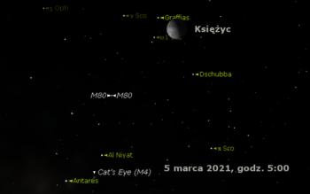 Nagłówek 2021 mar 1