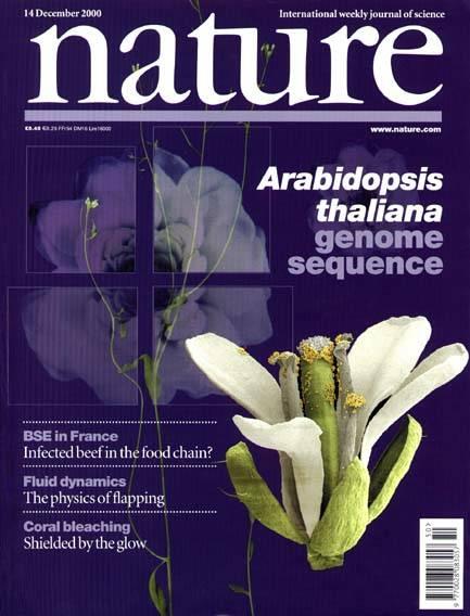 Arabidopsis thaliana na okładce Nature