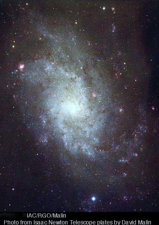 M33 - czy zburzy obecną teorię ewolucji galaktyk?