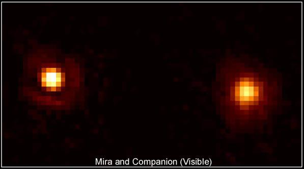 Mira i jej towarzysz