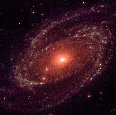 M81 w ultrafiolecie