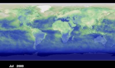 Mapa sporządzona przez satelitę Terra