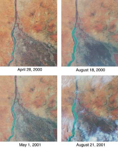 Satelitarny obraz Nilu