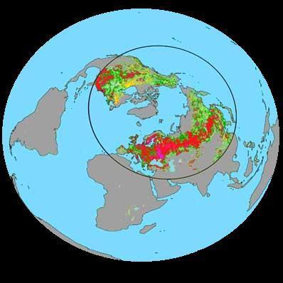 Wzmożony wzrost roślin na półkuli północnej