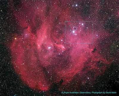 IC 2944 wCentaurze