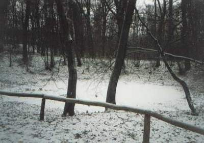 Rezerwat Meteoryt Morasko (I)