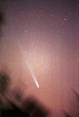 Kometa Ikeya-Zhang (12)