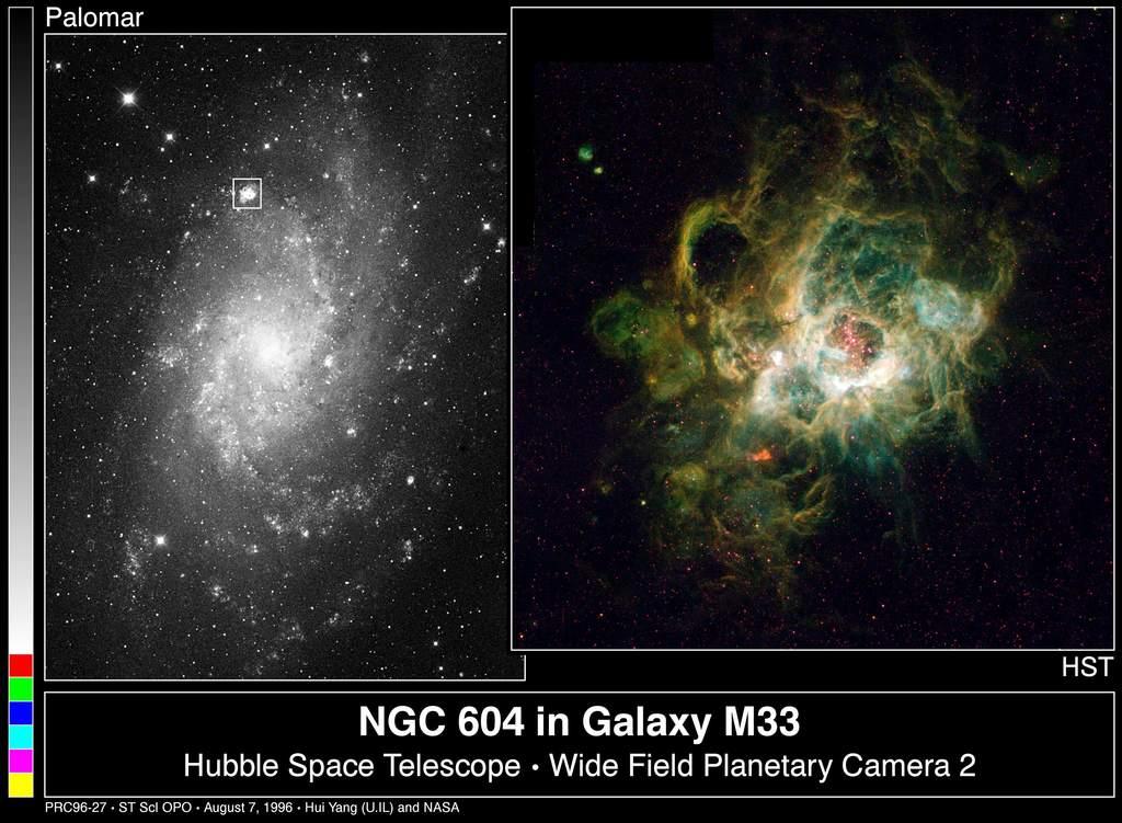 NGC 604 wgalaktyce M33