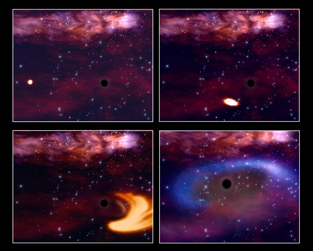 Cztery stadia rozrywania gwiazdy