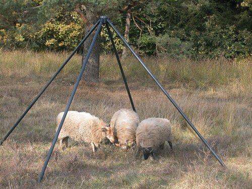 Pojedyńcza antena LOFARu