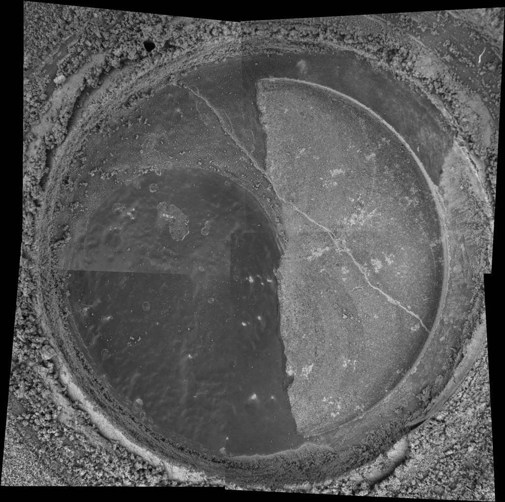 Nowy Jork podmikroskopem