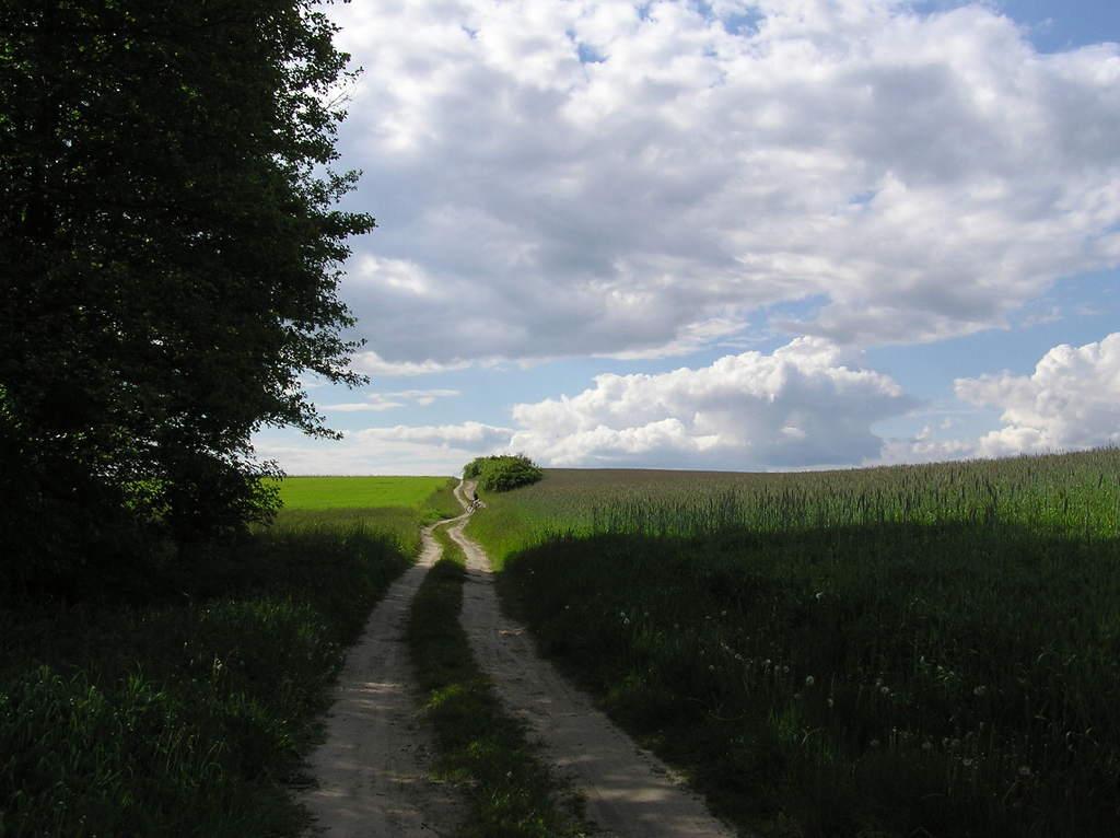 W drodze doMoraska