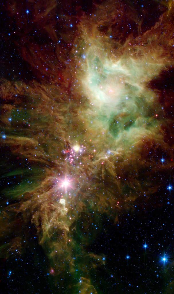 """NGC 2264 """"Choinka"""" 1"""