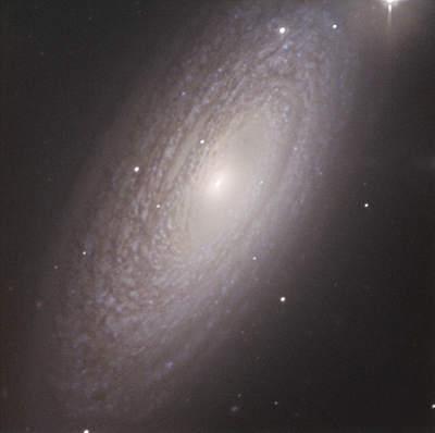 NGC 2841 nazdjęciu uczniów