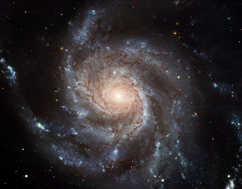 Galaktyka Wir (M101)