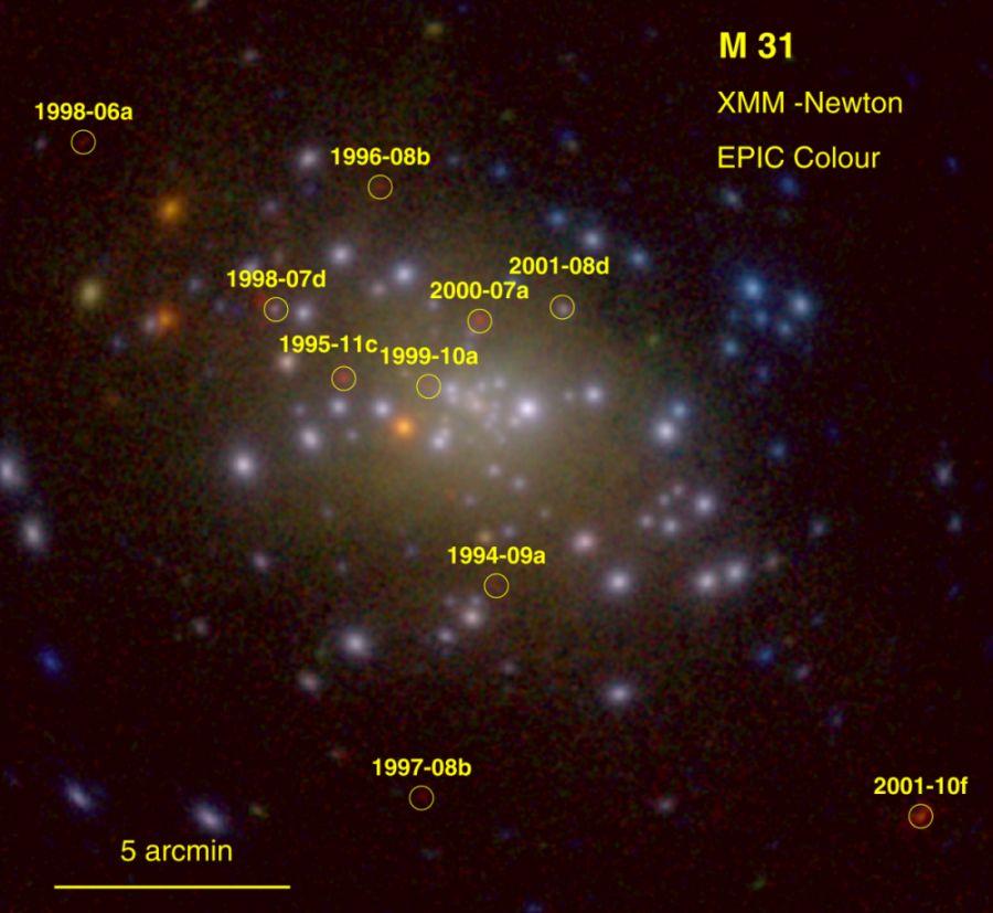 Nowe w galaktyce Andromedy