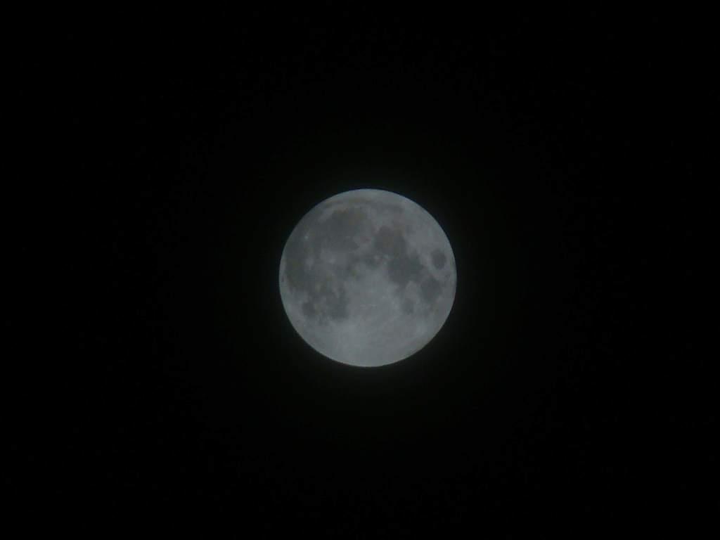 Zaćmienie Księżyca 21 lutego 2008 (VII)