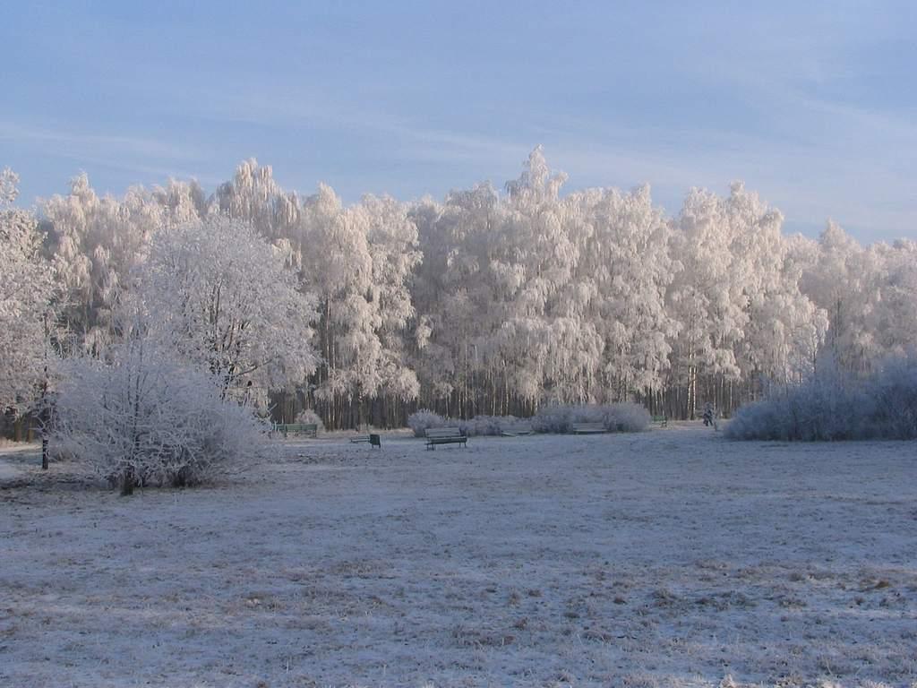 Zima 2007/2008 na Widzewie