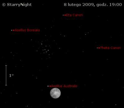 Położenie Księzyca i M44 wieczorem 8 lutego 2009.