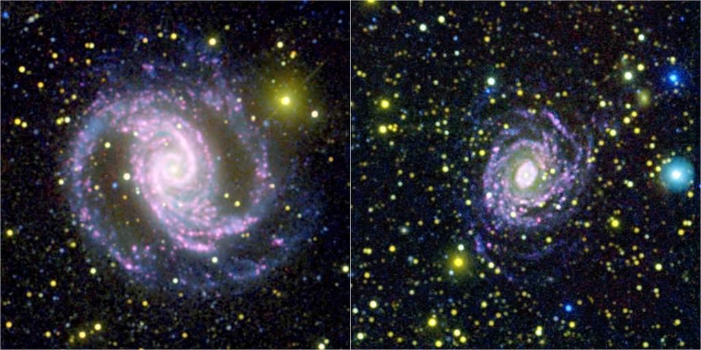 Różnice w proporcjach gwiazd różnych typów