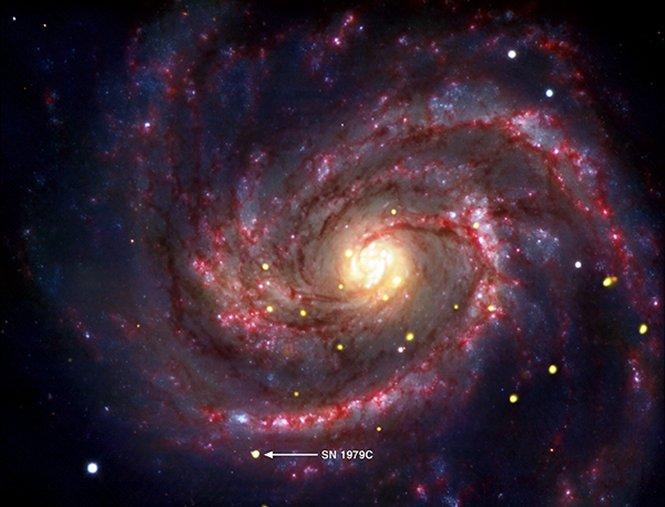 SN 1979C