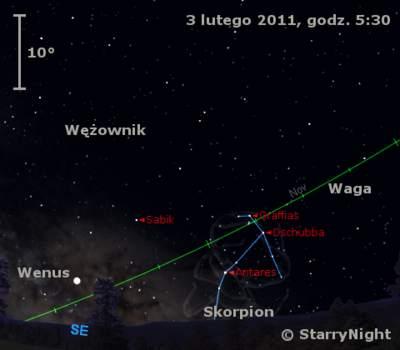 Położenie Wenus wpierwszym tygodniu lutego 2011