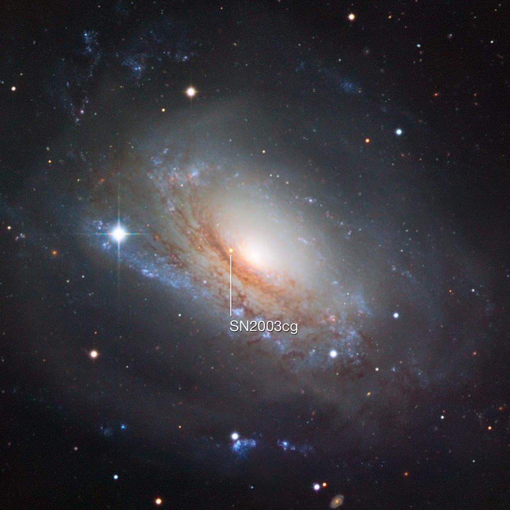 SN 2003cg wNGC 3169