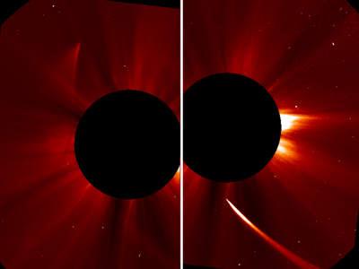 Kometa C/2012 S1 (ISON), 29 listopada 2013 (2)