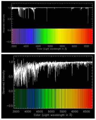 Spektrum SM0313