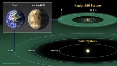 Porównanie układu planetarnego Kepler-186 zwewnętrznym Układem Słonecznym