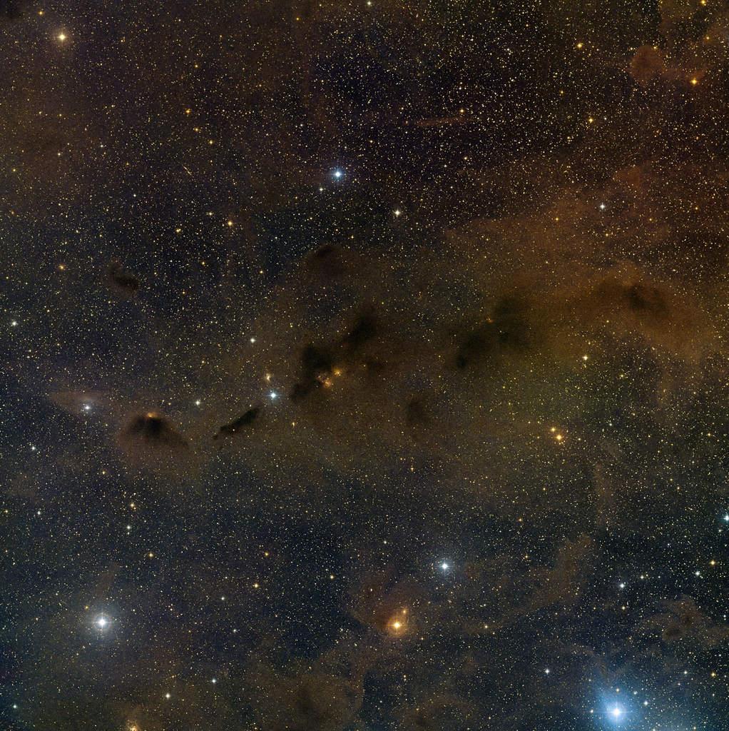 Obszar gwiazdotwórczy w Byku