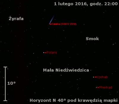 Położenie komety C/2013 US10 (Catalina) w pierwszym tygodniu lutego 2016 r.