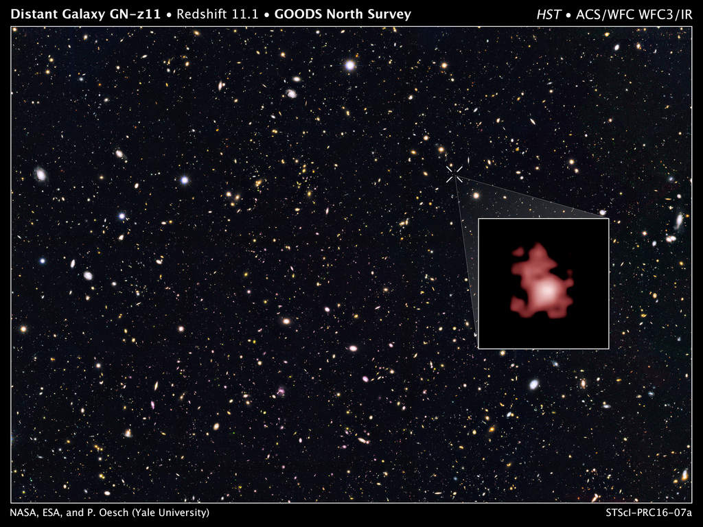 Odległa galaktyka GN-z11.