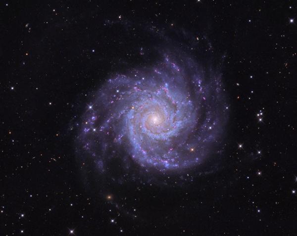Galaktyka M74, w której odkryto supernową