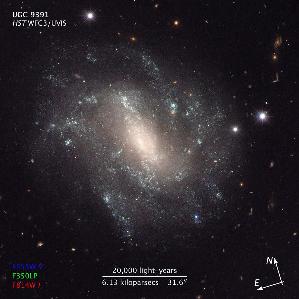 UGC 9391